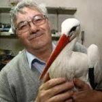 クロアチアのコウノトリ(マレーナ)と孤独な老人(スティエパン)の不思議な生活と純愛物語
