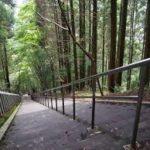 釈迦院御坂遊歩道( 熊本県)の日本一の石段の3333段の所要時間や御朱印は?